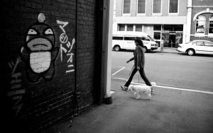 Graffiti, Lady and Dog by parablev