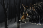 Prize: Wolf by Brevis--art