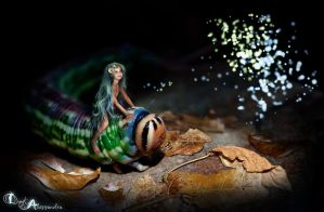 Caterpillar Fairy by digitalessandra