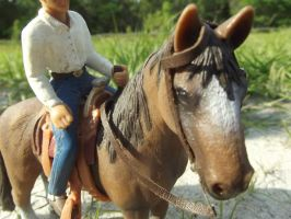 Waiting to go--Schleich by LazyHcustomtack