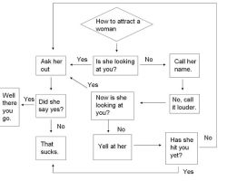 Flowchart 1: How to Attract by Noyoucantmesswithme
