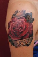 a rose tattoo, ASDF for the family by graynd