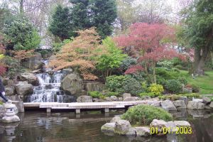 Holland Park Picture Waterfall by CooroSnowFox