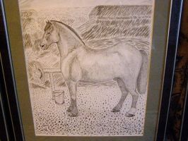 A draught horse by KanaGo