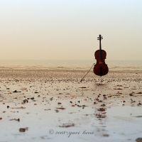 cello on the beach by nnoik