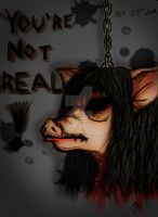 YOU'RE NOT REAL by VampireSelene13