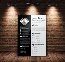Job Resume , CV, Cover Letter, Portfolio by Designhub719
