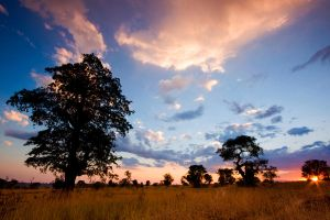 Under African Skies by hougaard