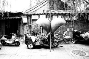 Transport in China by Engazung