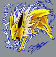 Jolteon uses Thunder by Ryu2010