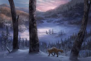 Lone Fox by jjpeabody