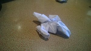 Origami Firefly-Class Transport Ship by taerkitty