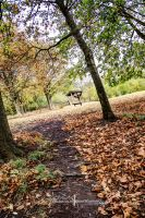 The Autumn Path. by ElementaryDearWatson
