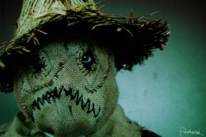 Scarecrow by ParenthesisX