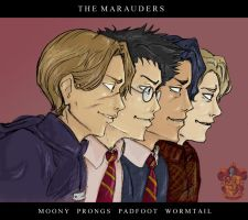 HP - The Marauders by akanai