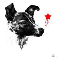 Laika by if-i-only-could