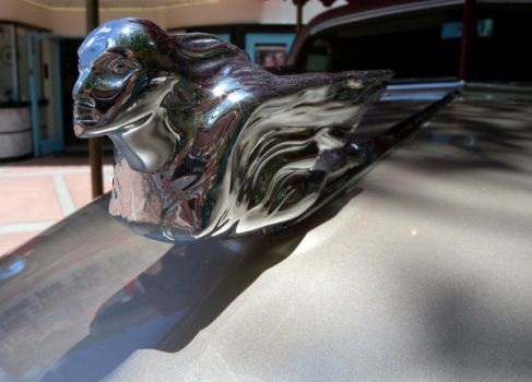 Hood Ornament by 0149