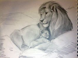 Lion Sketch.... by Called1-for-Jesus
