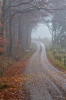 Autumn at the foggy country road by roisabborrar