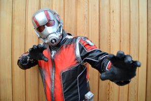 Ant Man Cosplay (2) by masimage