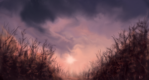 Sky Scape by thepurpleorchid1