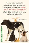 Animals have no feelings by veganartbook