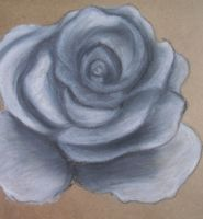 Rose Conte Crayon by XpresslifeTifa