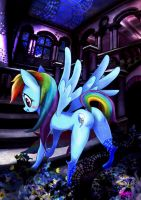 MLP  Rainbow Dash by skyshek