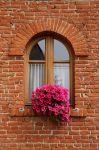 Window by luis75