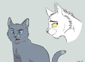 Bluestar and Whitestorm by Graystripe64