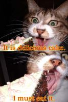 Delicious cake :0 by Yumkie