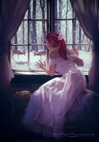 Through the window by LastChanceForever