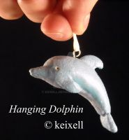 Dolphin by keixell