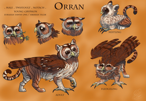 Windsonde: Orran by shelzie