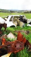 rusted cars by EvilPurpleChicken