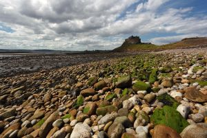 Holy Island by scotto