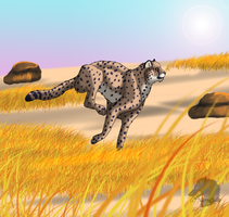 Running cheetah by Narncolie