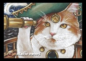 Pirate Cat 3 by natamon