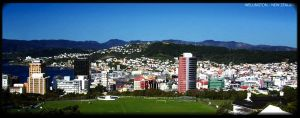 Wellington City Scape by awe-inspired