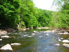 Tohickon Creek 4 by wax-wing