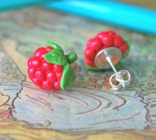Raspberry Studs by Madizzo