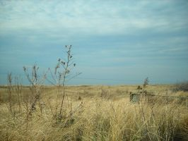 delaware bay 7 by Stock-Tenchigirl15