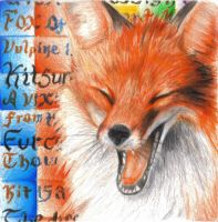 Golden Red Fox by coonotafoo