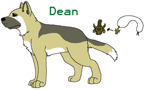 SPN Dogs - Dean Winchester Ref by BanditKat