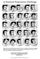 25 Essential Expressions Meme by kojiro