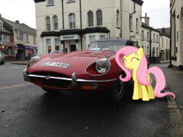 Fluttershy with the E - Type by Uponia