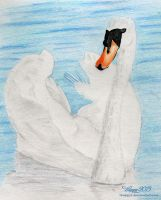 Swan Drawing by 5Happy5
