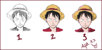 Luffy steps by superandres123