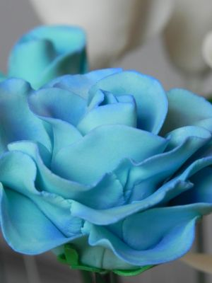 Dusted Roses_05 by ToenWraith