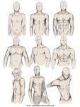 +BODY TYPE STUDY+ by jinx-star